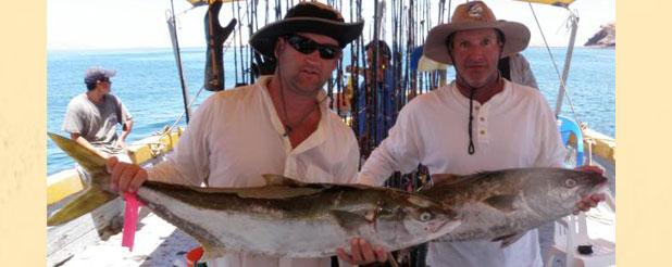 Tony reyes fishing tours san felipe baja mexico for Fishing report mexico beach fl